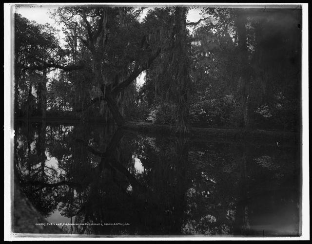 The Lake, Magnolia-on-the-Ashley, [Magnolia Gardens], Charleston, S.C.
