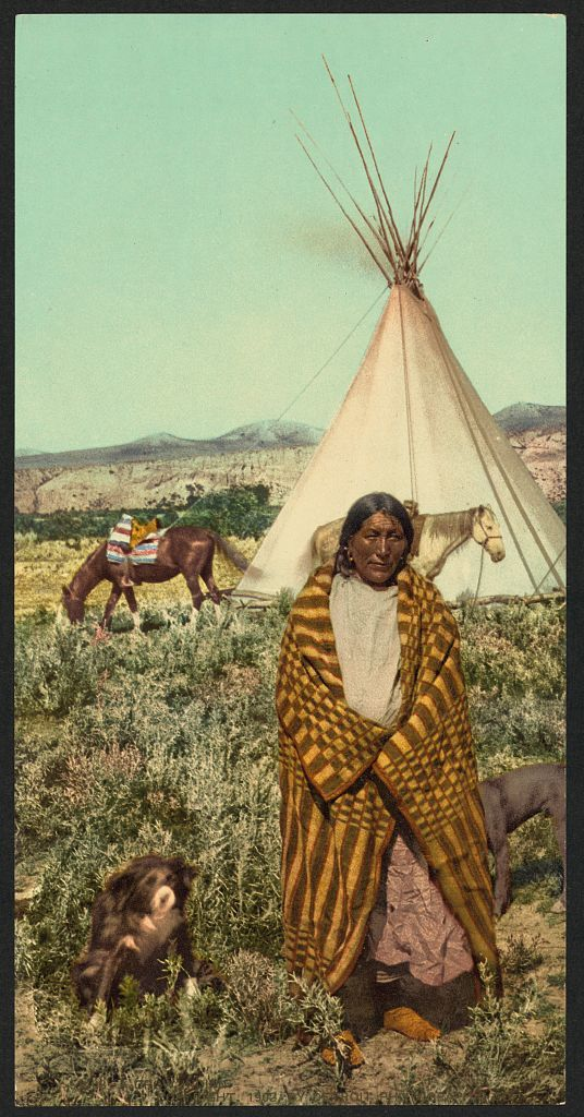 A Crow indian