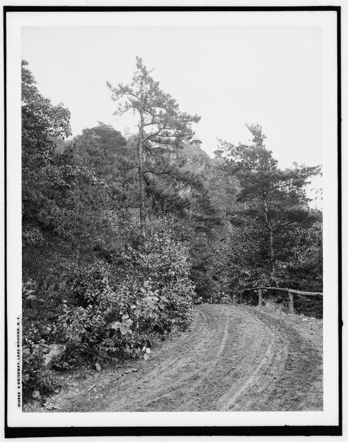 A Driveway, Lake Mohonk, N.Y.