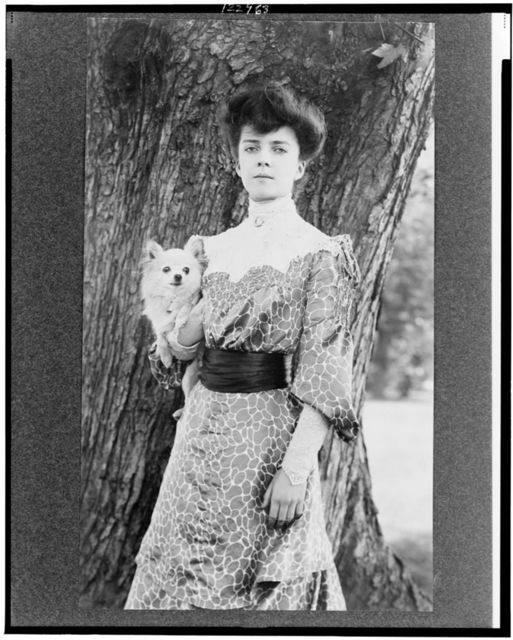 [Alice Roosevelt Longworth, three-quarter length portrait, standing in front of tree, facing slightly left, holding small dog]