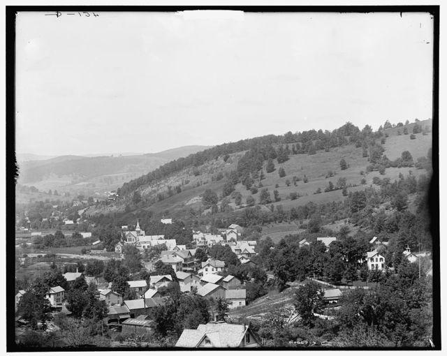 Fleischmann's and Hotel Switzerland, Catskill Mountains, N.Y.