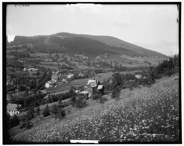 Fleischmann's, Catskill Mountains, N.Y.
