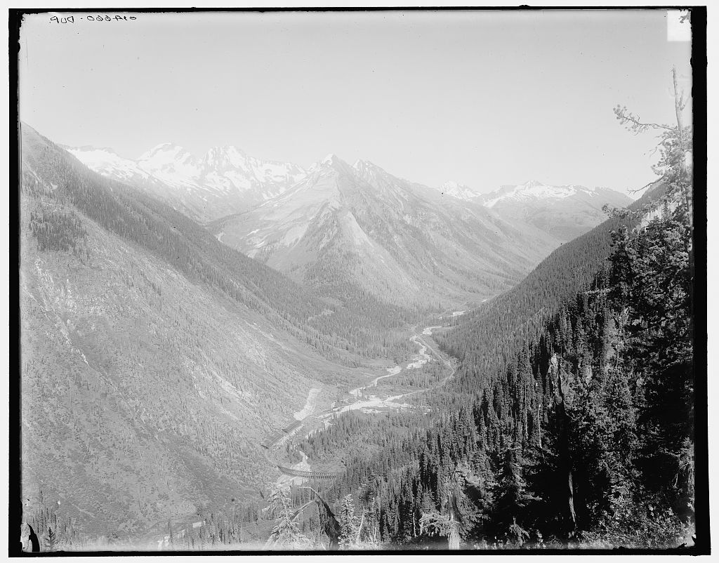 [Illecillewaet Valley view from Marion Lake, Selkirk Mountains, B.C.]