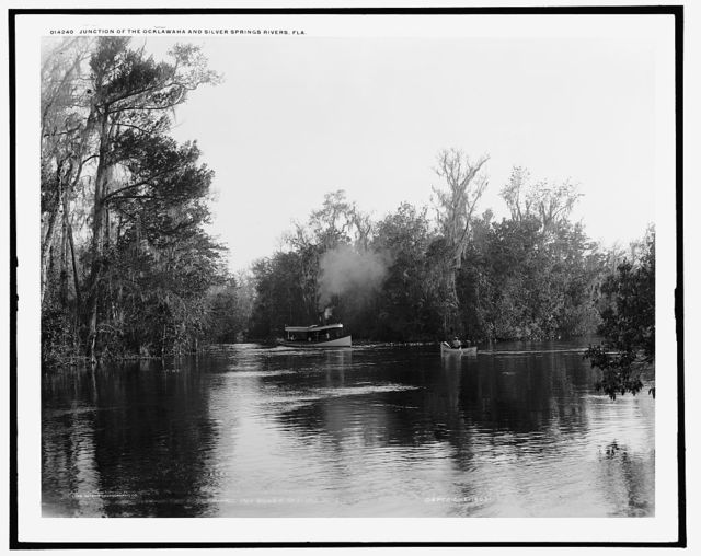 Junction of the Ocklawaha [sic] and Silver Springs Rivers, Fla.