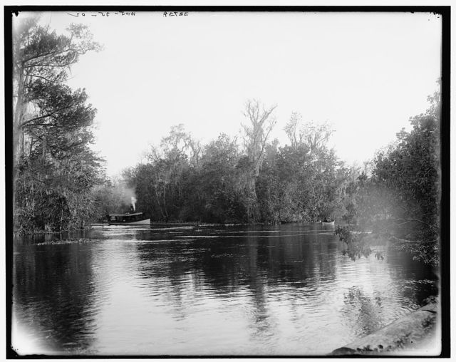 [Junction of the Ocklawaha [sic] and Silver Springs rivers, Florida]
