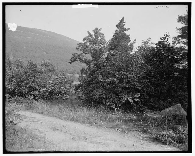 Kaaterskill Mountain with Otis Elevating Railway, Catskill Mountains, N.Y.