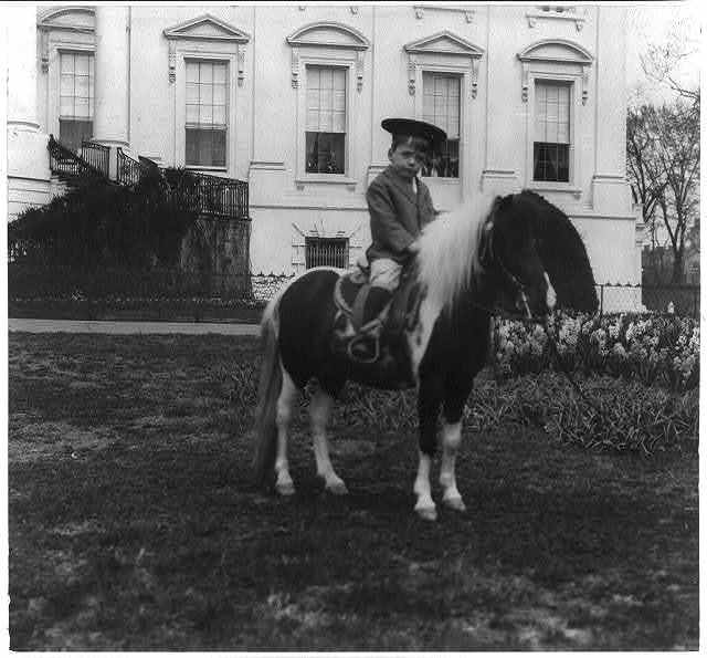 Quentin Roosevelt on a pony