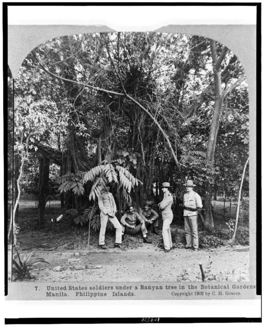 United States soldiers under a Banyan tree in the botanical gardens, Manila, Philippine Islands