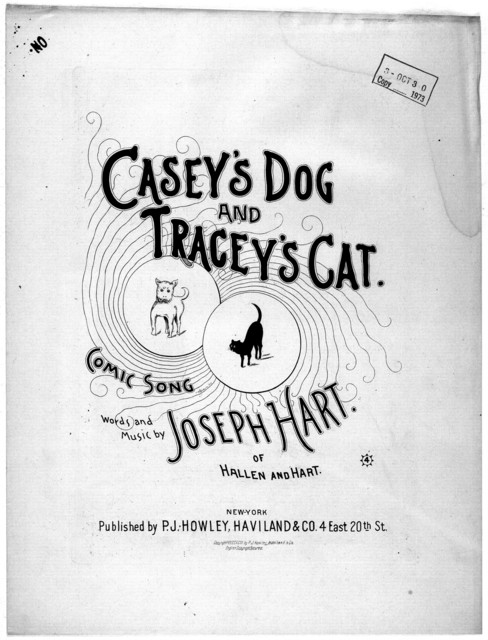 Casey's dog and Tracey's cat