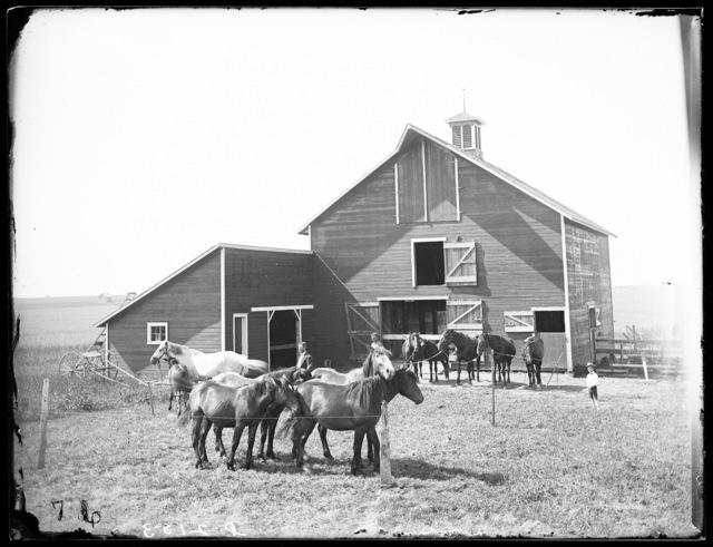 C.B. Marsh family in front of his barn at Amherst, Buffalo County, Nebraska.