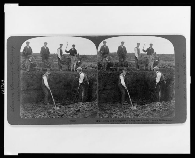 Cutting and carting turf at a bog near Kiltoom, County Roscommon
