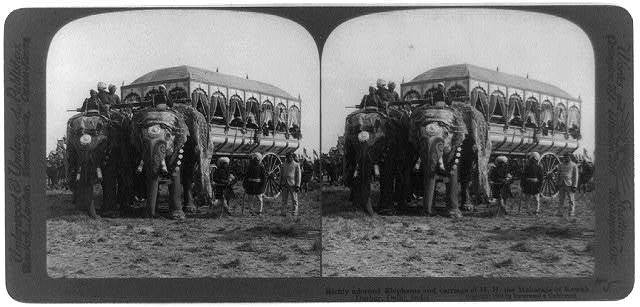 Durbar, Delhi, India: Richly adorned elephants and carriage of H.H., the Maharaja of Rewah