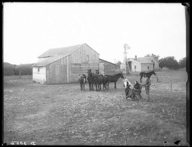 Elderly lady in wheelchair along with a man and woman on a farm near Buda, Buffalo County, Nebraska.