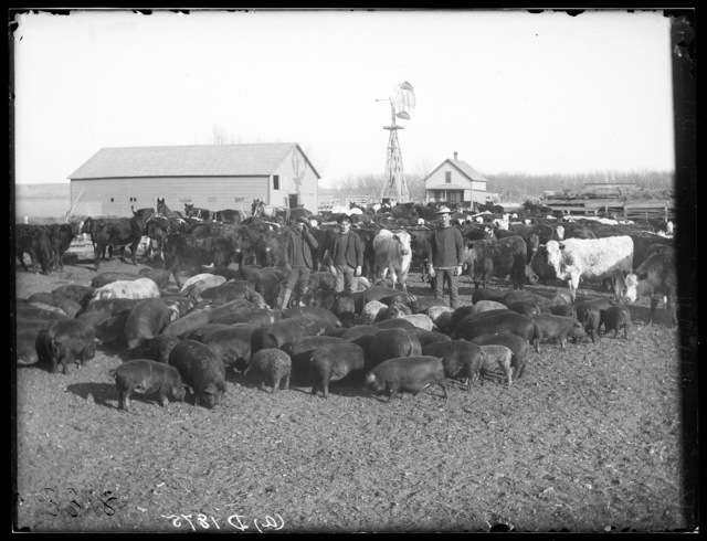 Flagg Ranch on the South Loup River, near Sartoria, Nebraska.