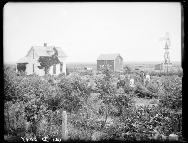 Henry Franks farm near Kearney, Nebraska
