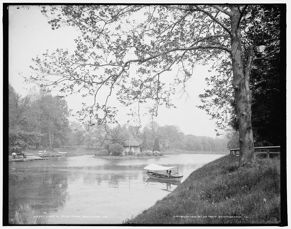Lake in Druid Park, Baltimore, Md.