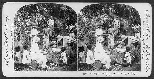 Preparing manioc [casava] flour - a rural industry, Martinique, F.W.I.