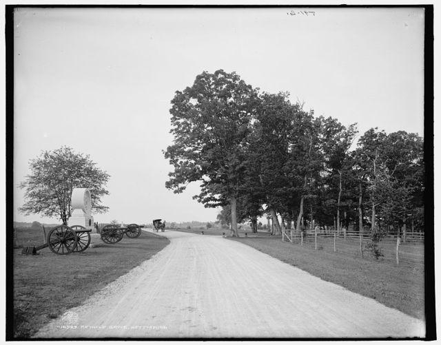Reynold [i.e. Reynolds] grove, Gettysburg