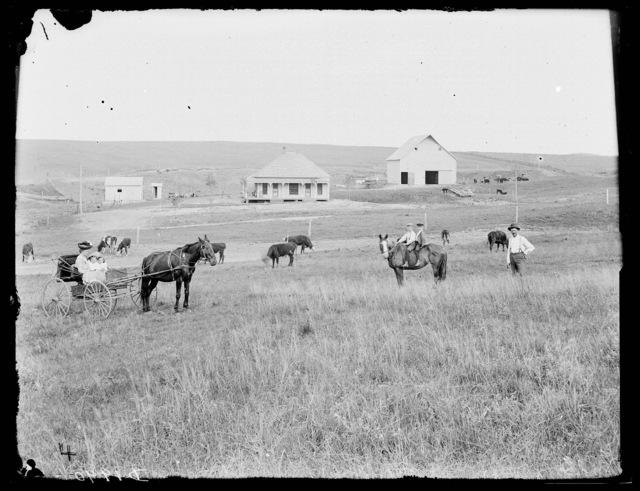 R.T. Walker, Custer County, Nebraska.