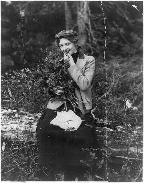 The picnic girl out for a day in the woods near Valdez, Alaska, enjoying a feast of blueberries