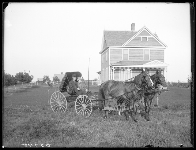 Theo. Wagoner farm near Amherst, Buffalo County, Nebraska.