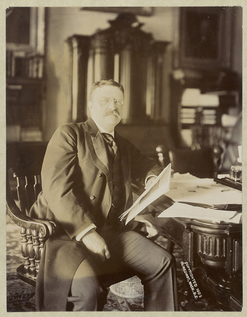 [Theodore Roosevelt, seated, leaning on desk holding papers, facing front]
