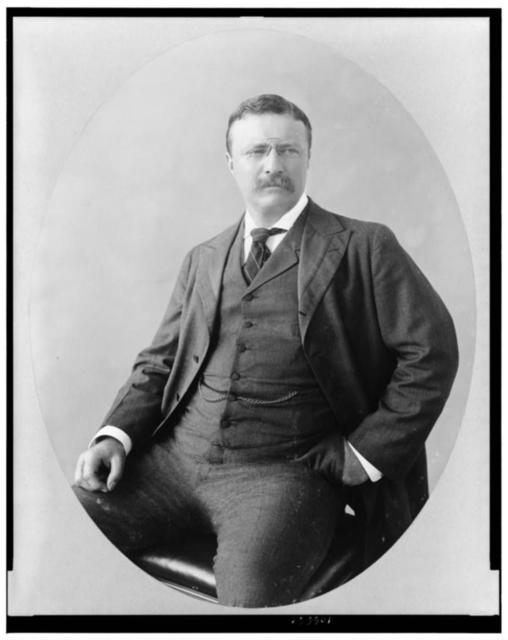 [Theodore Roosevelt, three-quarter length portrait, seated, facing right]