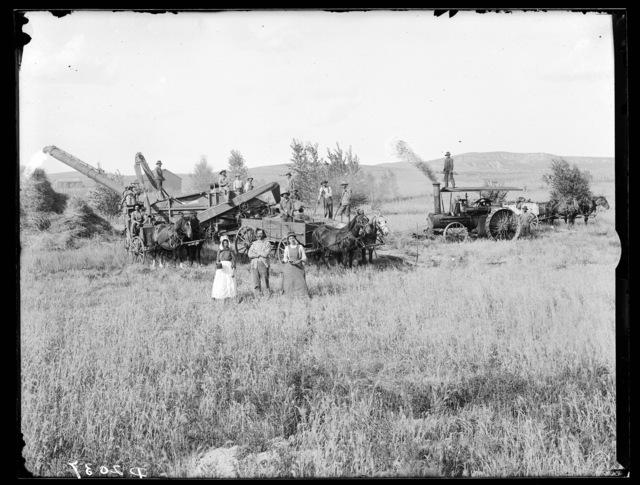 Threshing on the C.F. Hammond farm, Custer County, Nebraska.