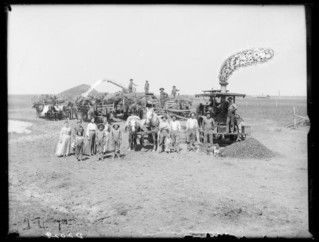 Threshing on the Ed King near Wood River, Nebraska.