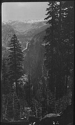 Travel views of Yosemite National Park