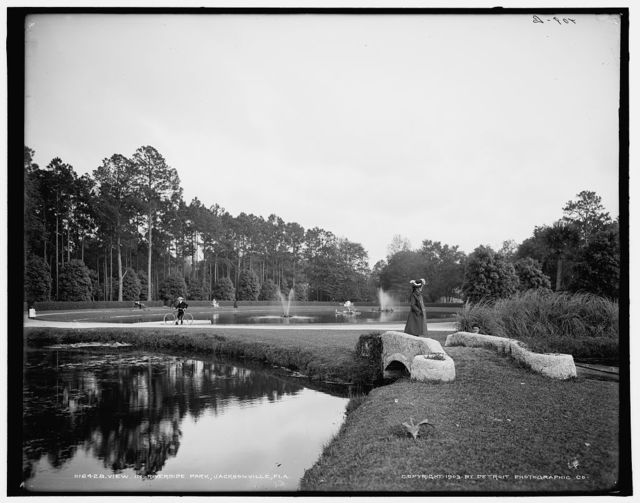 View in Riverside Park, Jacksonville, Fla.