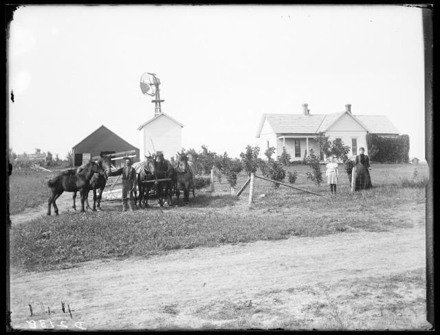 W. Rice family on their farm in Amherst, Buffalo County, Nebraska.