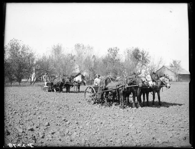 Walter Scott, Gibbon, Buffalo County, Nebraska.