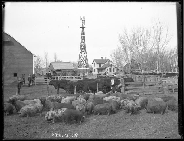 W.G. Fredrick Ranch, Kearney, Nebraska