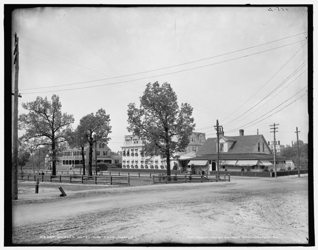 Wilcox's [i.e. Willcox's] hotel and cafe, Aiken, S.C.