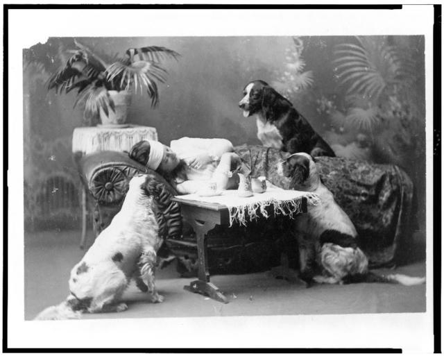 [Woman, who appears to be ill, lying on couch, with three dogs looking on]