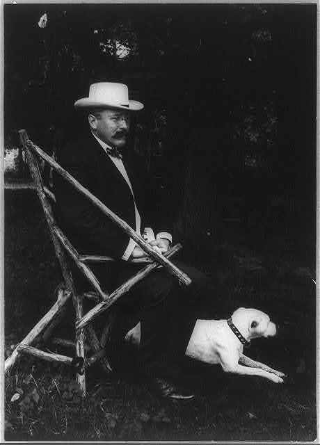 [Alton Brooks Parker, 1852-1926, full length portrait, seated in rustic chair, facing right; with dog on lawn; wearing straw hat]