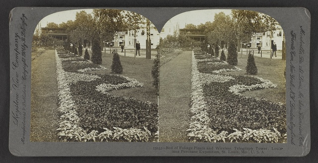 Bed of foliage plants and wireless telegraph tower, Louisiana Purchase Exposition, St. Louis, Mo., U. S. A.