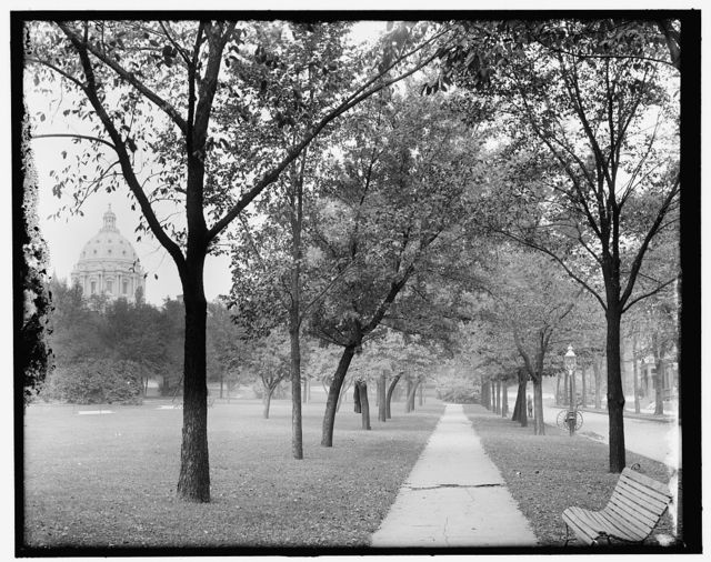 [Capitol dome from Central Park, St. Paul, Minn.]