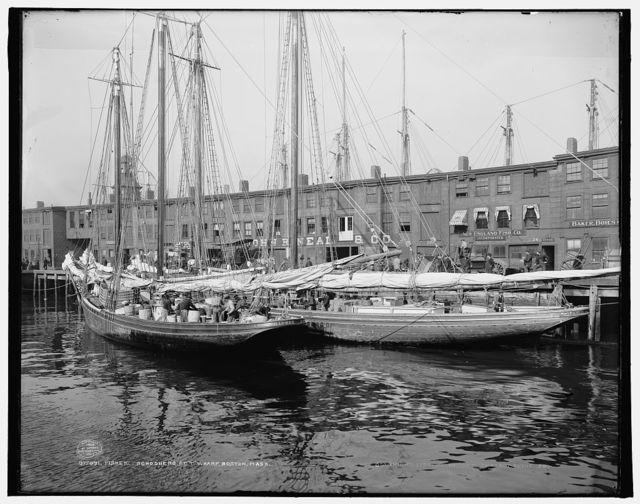 """Fisher schooners at """"T"""" wharf, Boston, Mass."""