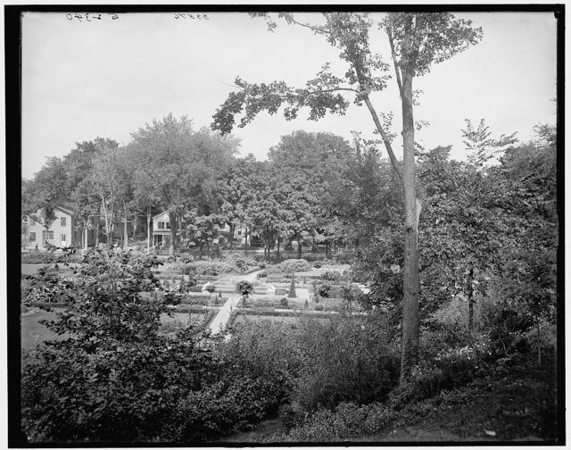[Flower beds in Canfield (Congress Spring) Park, Saratoga, N.Y.]