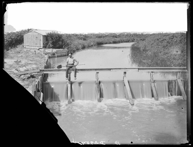 Irrigation ditch east of Cozad, Nebraska