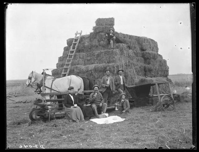 M.C. Ekstrom, bailing alfalfa near Overton, Nebraska.