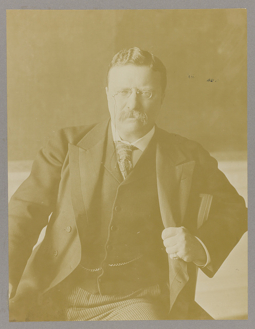 [Theodore Roosevelt, half-length portrait, seated with arm over armchair, facing front]