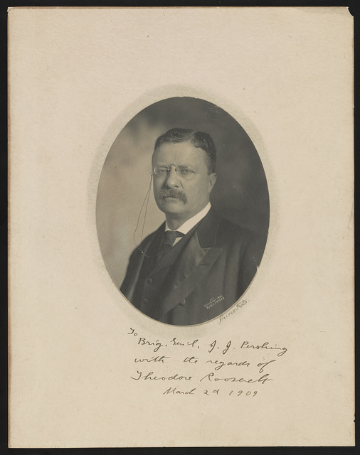 [Theodore Roosevelt, head-and-shoulders portrait, facing front] / Prince Foto.