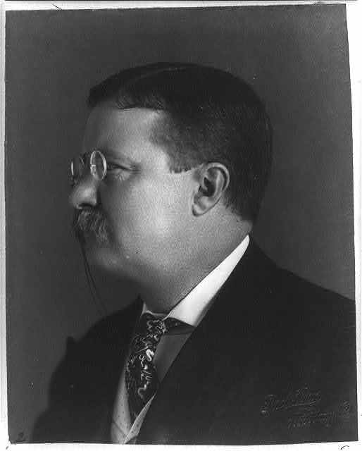 [Theodore Roosevelt, head-and-shoulders portrait, facing left] / Pach Bros., 935 Bdwy, N.Y.