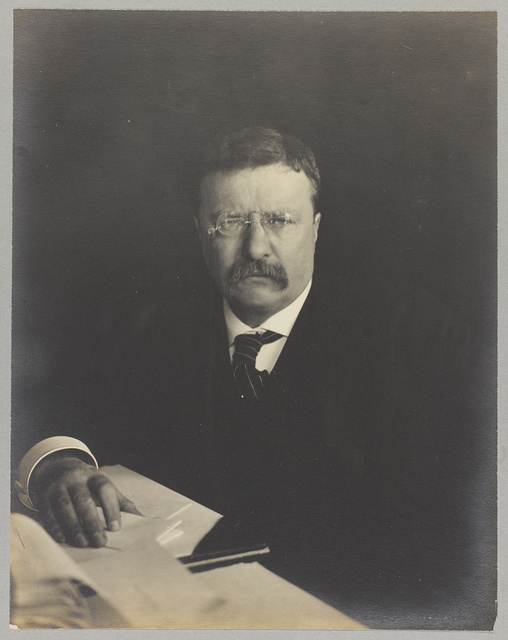 [Theodore Roosevelt, head-and-shoulders portrait, seated at desk with papers, facing front]