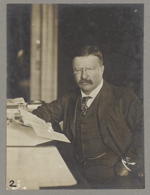 [Theodore Roosevelt, seated at his desk, holding papers]