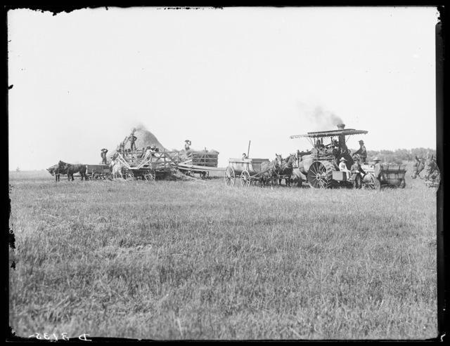 Threshing crew shown steam threshing near Cozad, Dawson County, Nebraska.
