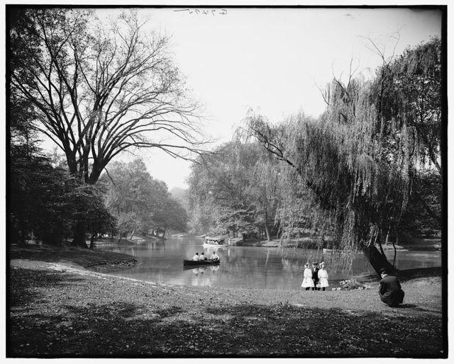 [A Glimpse of lake, Prospect Park, Brooklyn, N.Y.]